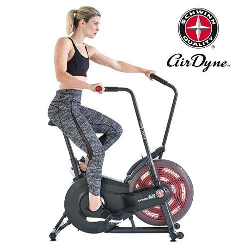 Schwinn Airdyne AD2 Fitnessbike
